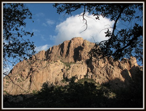 Cliffs above Cave Creek on the way from Portal to Chiricahua Nat'l Monument.