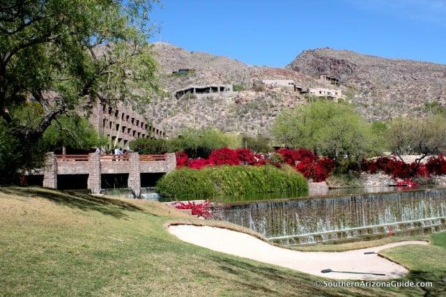 Waterfall at Loews Ventana Canyon Resort