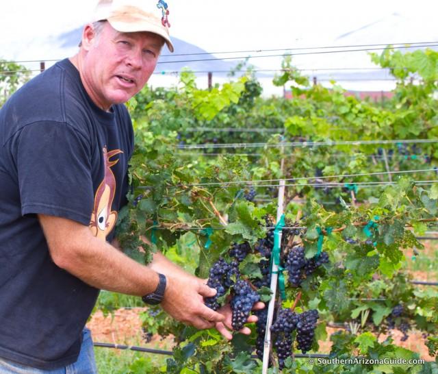 Rancho Rossa Winemaker Chris Hamilton.
