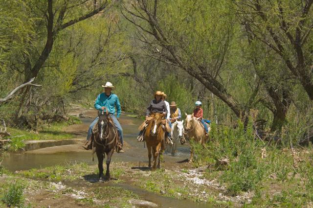 Circle Z Ranch, Patagonia AZ