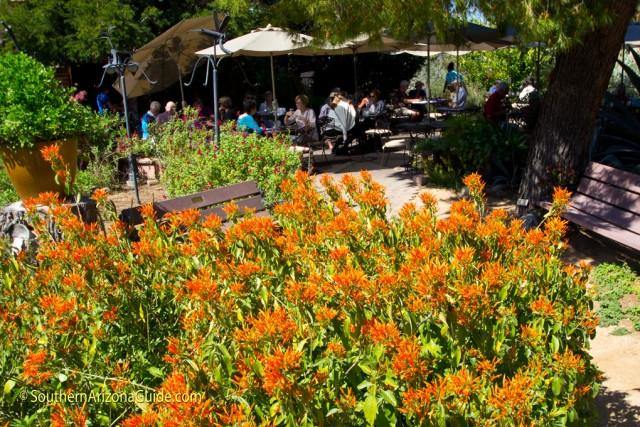 Garden Bistro at Tohono Chul Park