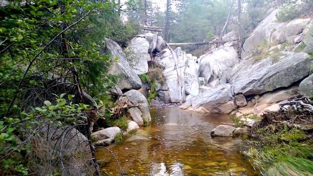 Marshall Gulch Creek on Mt. Lemmon.
