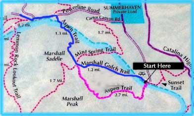 Mt. Lemmon Trails