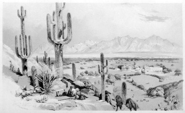 John Bartlett Tucson Sketch