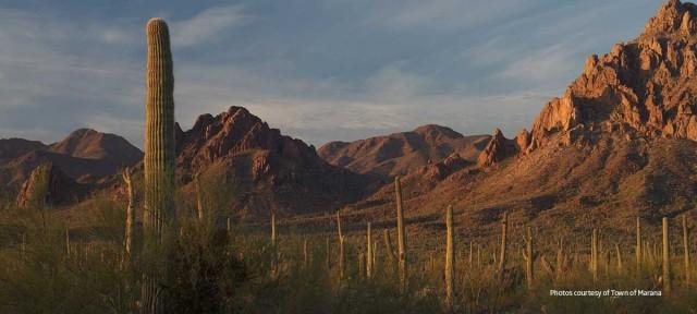 Scenic Marana Arizona