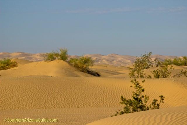 Imperial Sand Dunes 20 miles west of Yuma, AZ