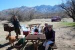 Catalina St Park Picnic