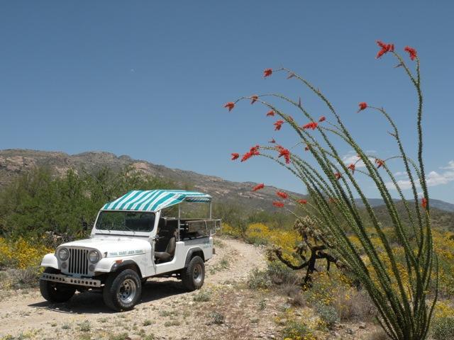 Jeep Tours Yuma Az