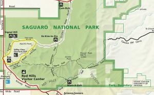 Mt. Wasson area trails