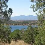 Parker Lake viewed through trees