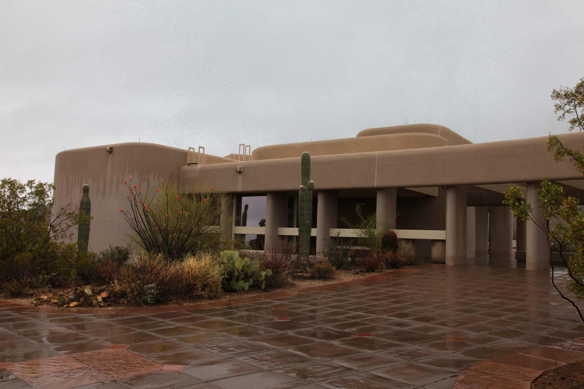 saguaro national park west. Black Bedroom Furniture Sets. Home Design Ideas