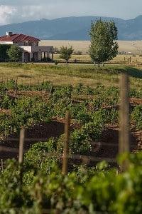Southern AZ Wine Country